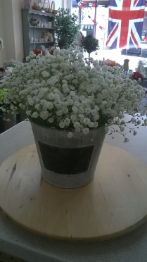 Gypsophilia bucket